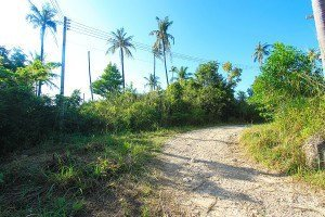 800m2 Koh Phangan sunset sea view land for sale