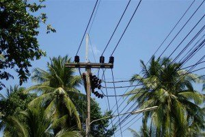 Electricity - Koh Phangan, easy access 4.45 rai @ 8.25m baht