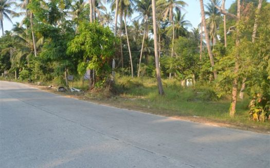 2+ rai Koh Phangan main road commercial land for sale