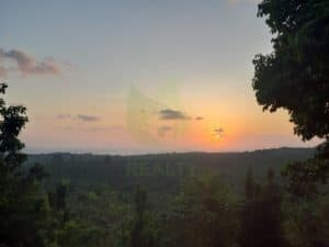 Gorgeous Koh Phangan panoramic sunset sea-view land for sale