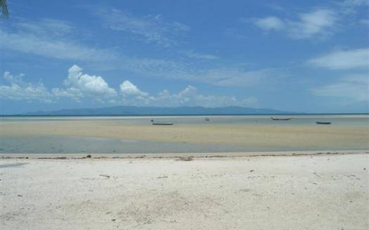 Best investment Koh Phangan beachfront land plot for rent
