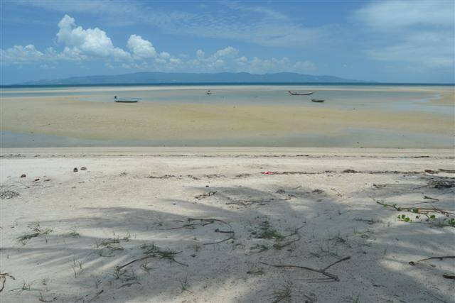 Koh Phangan's best real estate property, land for sale & rent