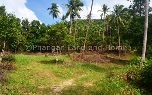 A great 4 or 6 rai plot of Koh Phangan land for sale