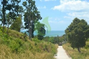 Koh Phangan west coast sunset sea view land for sale