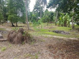 Bargain Meadawan Koh Phangan land for sale