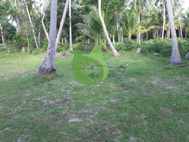 Koh Phangan land for sale in Coconut Lane area (1)