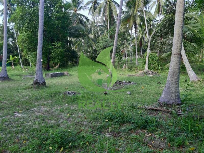 Koh Phangan land for sale in Coconut Lane area (2)