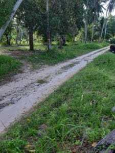 Koh Phangan land for sale in Coconut Lane area (4)