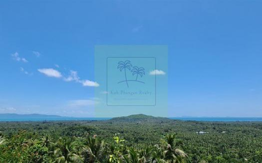 Low-priced Phangan sea-view land on offer (3)